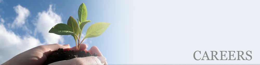 careers_banner